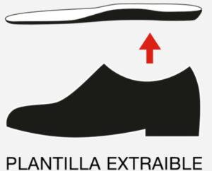 PLANTILLA EXTRAIBLE